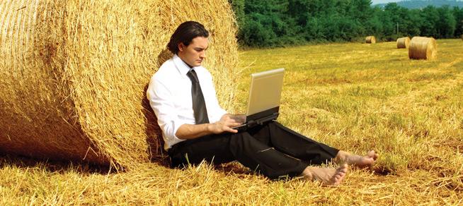 Как украинский агросектор перешел от советских колхозов к современным ИТ-решениям
